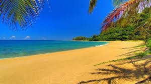 exotica plaja